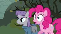 Pinkie Pie surprised S4E18