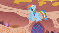 Rainbow Dash with upside down wings S1E03