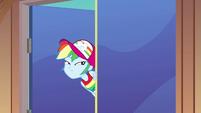 Rainbow entering the deck interior EGSB