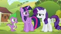 "Rarity ""refused to relax until she had fixed them"" S6E10"