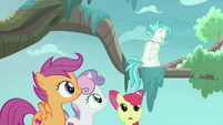 Terramar refusing to get out of the tree S8E6