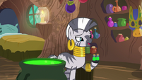 """Zecora """"there's no time to waste"""" S9E18"""