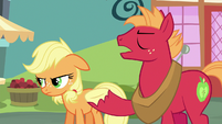 "Big Mac ""the tradition of everypony in Ponyville linin' up"" S6E23"