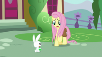 """Fluttershy """"Zecora said to go home first!"""" S9E18"""