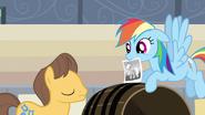 S02E14 Rainbow pomaga znaleźć Appejack