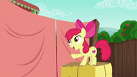 "Apple Bloom ""with my big sister"" S6E14"