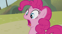 Pinkie Pie cries out Rainbow's name S5E8