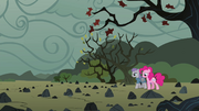 Pinkie and Maud reach the rock farm S4E18.png
