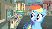 Rainbow notices the line of ponies S4E08.png