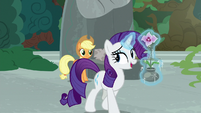"""Rarity """"not everything is a competition"""" S7E25"""