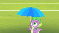 Spike with an umbrella S4E24
