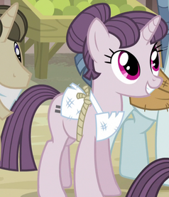 Sugar Belle unmarked ID S5E1.png
