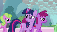 Twilight -where is Rainbow Dash- S03E13