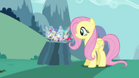 Fluttershy setting the Breezies down S4E16