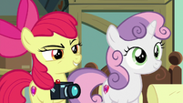 Apple Bloom with a confident grin S9E12