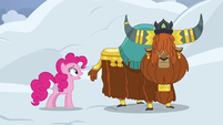 """Pinkie Pie """"avalanches like this"""" S7E11"""