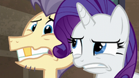 Pouch Pony looking freaked S6E3