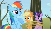 Rainbow Dash sounded like S2E10