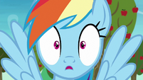 Rainbow Dash surprised by Applejack's answer S8E5