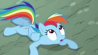 Rainbow looking at the piñata S4E12