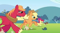 S03E03 Applejack, Big Macintosh, Apple Bloom i Winona