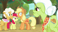 AJ, Apple Bloom, and Goldie look surprised at Granny S9E10