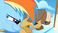 Filly Rainbow and the colts ready to race S1E23