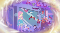Fluttershy being followed by multiple animals EGDS5