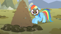 Rainbow Dash with mud on face S01E19