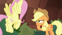 AJ looks embarrassed at Fluttershy S8E23