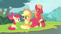 Apple Bloom -Granny wasted her money-- S4E20