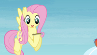 Fluttershy with horseshoe S4E10