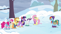 Mane Six in winter clothes with Tank S5E5