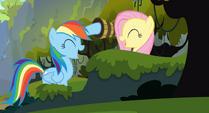 Rainbow Dash and Fluttershy high-hoof S3E09