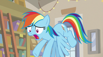 "Rainbow Dash panicking ""right now!"" S9E21"