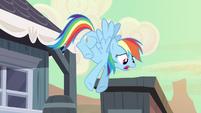 Rainbow Dash to Ponyville S2E14