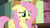 """Fluttershy """"I hope I did the right thing"""" S6E11"""