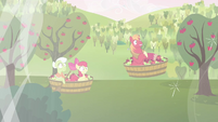 Granny Smith, Apple Bloom, and Big Mac in midair S03E10
