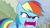"""Rainbow """"Do I look angry?!"""" S5E5"""