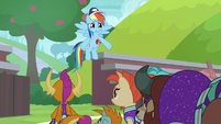 """Rainbow Dash """"but all of you do"""" S9E15"""