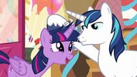 "Twilight Sparkle ""it was perfect!"" S5E19"