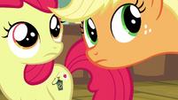 Apple Bloom and Applejack hears pest control pony S5E04