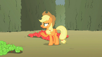 Applejack 'this here mission we're on' S2E01