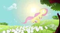 Fluttershy flying past dandelions S2E22