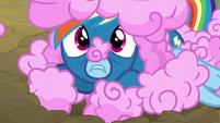 Rainbow Dash lives up to her nickname S6E7