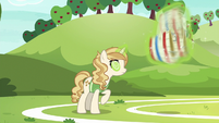 Sweet Biscuit making herself dizzy S6E18