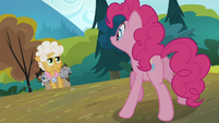 Pinkie says hello to Goldie Delicious S4E09