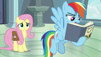 """Rainbow Dash """"destruction of temples"""" S9E21"""