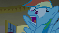 Rainbow freaking out -they're gone!- S8E5
