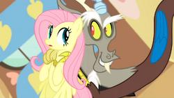 Discord sweet talks Fluttershy S03E10.png